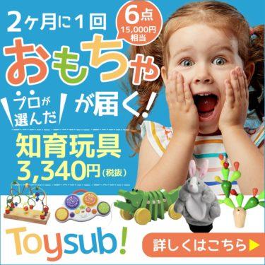 【トイサブ!】知育玩具の定額レンタルサービス(子供の年齢でカスタマイズ)する技術