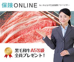 ストレスフリーの【保険ONLINE】自宅でプロに相談できる!無料のオンライン保険相談